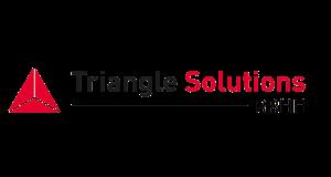 Logo Triangle Solutions Rrhh Espagne